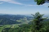 Landschaften in Mitteleuropa sind dominiert von Fichtenwäldern, die vom Klimawandel besonders bedroht sind. Foto: Jürgen Bauhus