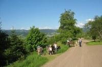 Waldgebiete als Naherholungsraum