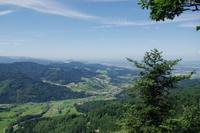 Der Schwarzwald im Klimawandel